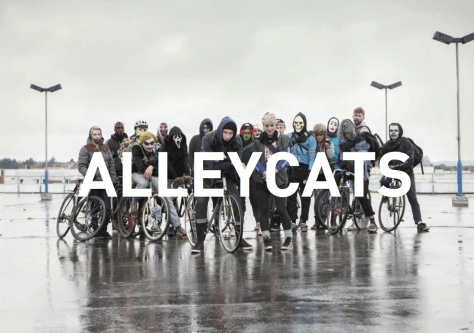 Alleycats1